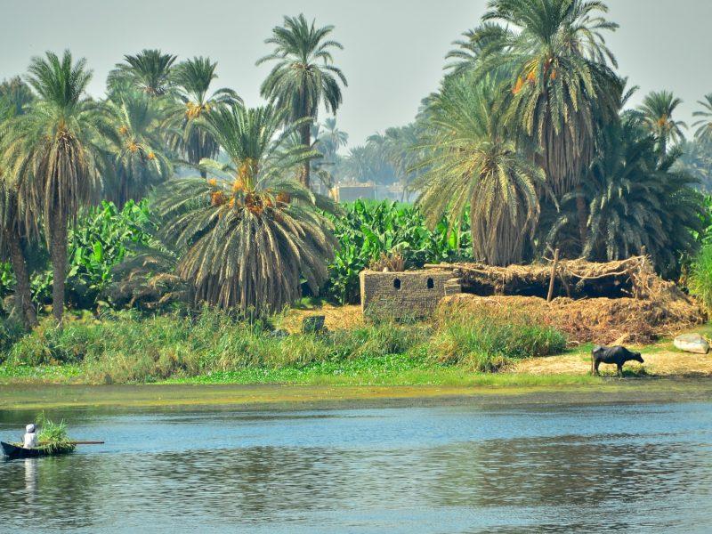 Nile riverside